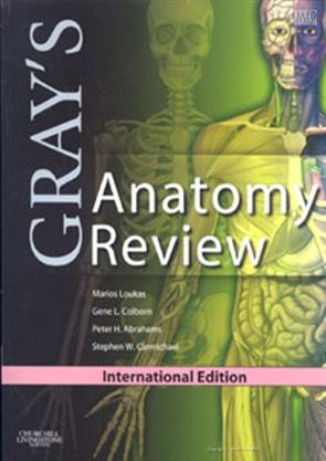 Grays Anatomy Review Ie Paper Back Loukas 9780808924036
